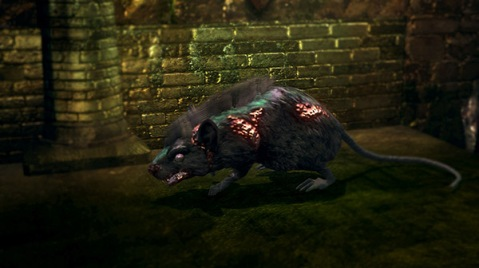 small-undead-rat-large
